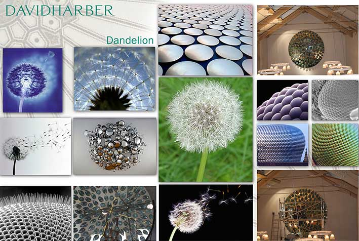 Inspiration from dandelions