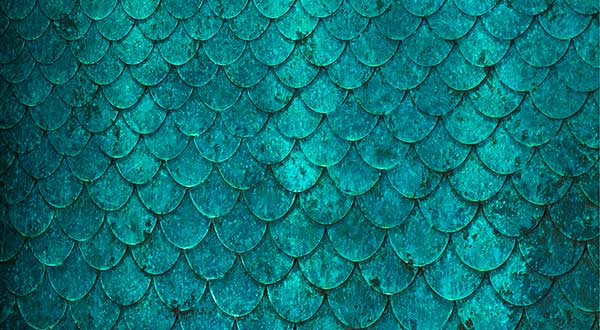 Detail of the bronze fish scales on the water wall