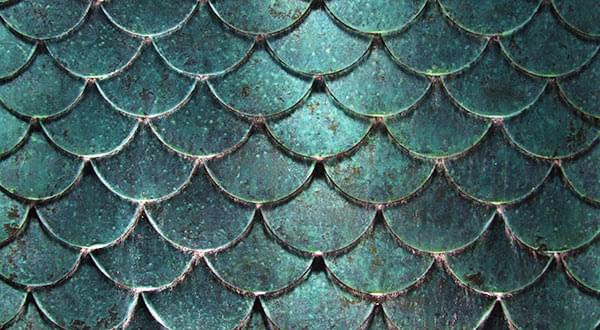 Detail of bronze fish scales